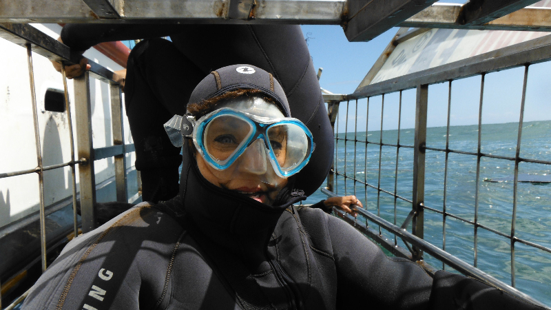 Cage Diving for Great White Sharks, Cape Town, South Africa